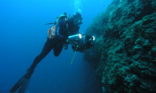 Tauchgänge bis 70 Meter Tiefe