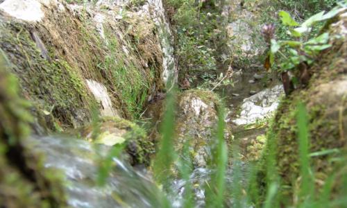 Wasserlauf bei M. Draga